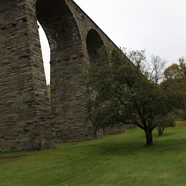 by Su San - Buildings & Architecture Bridges & Suspended Structures
