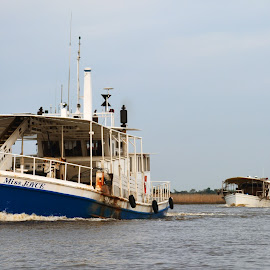 Oyster Fleet  by Wendy  Walters - Transportation Boats ( east pearl river, louisiana, oyster boats, louisiana oyster fleet, gulf coast oyster fleet )