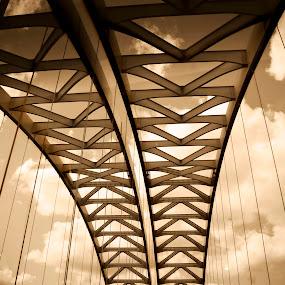 Bridge to Heavan by Irma Mason - Buildings & Architecture Bridges & Suspended Structures ( structure, nature, bridge, pwcbridges, country,  )