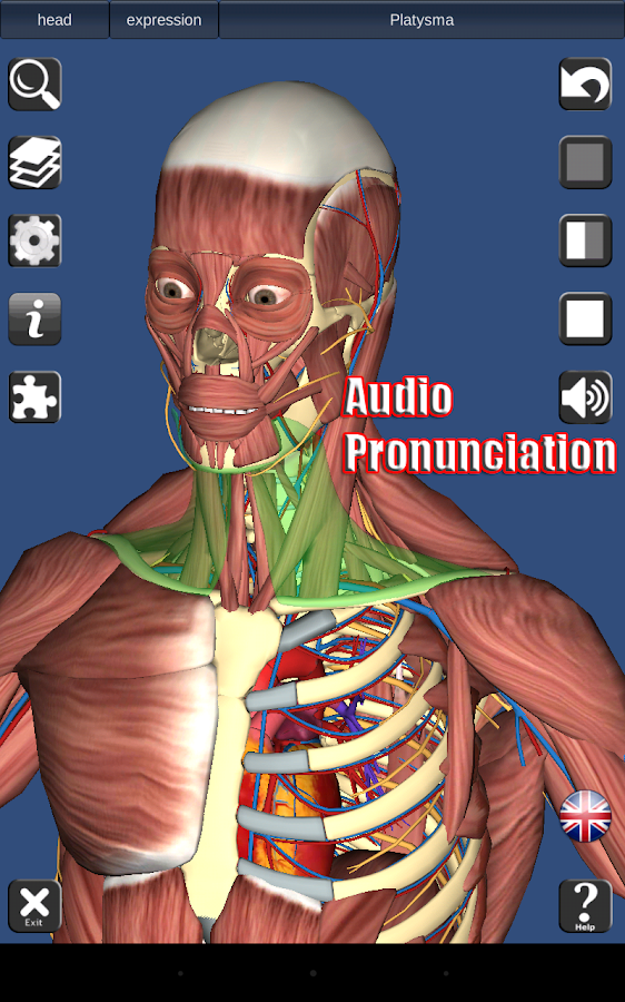 3D Anatomy Screenshot 9