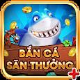 Vua San Ca - Ban Ca Doi Thuong