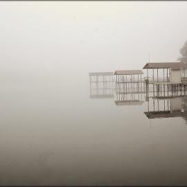 by Carol Stiles - Landscapes Weather
