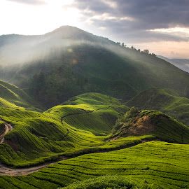 Good Time by Steven De Siow - Landscapes Mountains & Hills ( mountain, morning light, landscape photography, morning, landscape )