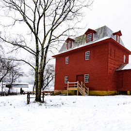 Last Snowfall for Big Otter River Mill by Norma Brandsberg - Buildings & Architecture Public & Historical ( old, mountain, photograph, bedford, visit, restaurant, roanoke, landscape, hiking, historic, photography, close, liberty, mill, camp, camping, flake, snow, peaks of otter, photographer, big otter river, virginia, va, place, top, blue ridge parkway, snowy, lake, suggest, photo, gristmill, rural, country, history, appalachian trail, opportunity, vacation, award winning, vista, grain, lumber, view, day, lodge, lodging, hike )