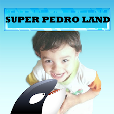 Super Pedro Land