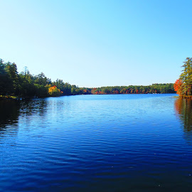 Fall scene! by Jon Maltz - Nature Up Close Water