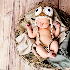 Birdie by Vanessa Brown - Babies & Children Babies ( bird, girl, wood, nest, cutie )