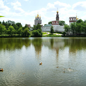Novodevichy convent, Russia by Vero Vero - City,  Street & Park  Historic Districts ( ogar, russia, chick, convent, duck, moscow, novodevichy, dome, lake, architecture, spring, golden )