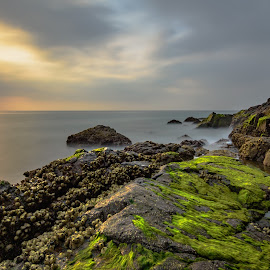 A Glimpse of Paradise Ep 2 by Shabbir Shani - Landscapes Waterscapes ( fujairah, clouds, life, mountain, nature, color, waterscape, uae, long exposure, beach, landscape, dibba, seascape\ )