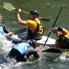 Canoe Polo by Scott Milne - Sports & Fitness Watersports (  )