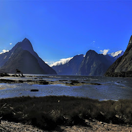 by Phil Bear - Landscapes Mountains & Hills ( mountains, milford sound, sound, fjords, new zealand )