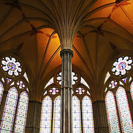 Home of the Magna Carta ~ Salisbury Cathedral by Ingrid Anderson-Riley - Buildings & Architecture Public & Historical