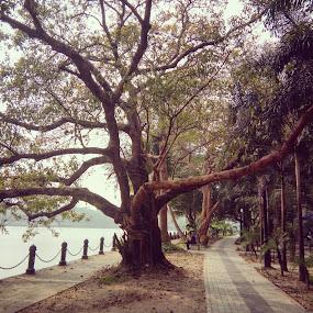 by Soumyadip Ghosh - City,  Street & Park  City Parks