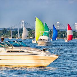 Sailboat Races by Carol Ward - Transportation Boats ( water, annapolis, sailboats, waterscape, boats, transportation, annapolis md )