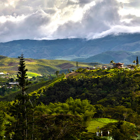 KM 18, Cali, Colombia by Stephanie Walsh - Landscapes Mountains & Hills ( colombia, el valle, hills, mountains, cali, valle del cauca, hdr, km 18, landscape, hdr photography )