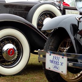 Vintage Beauties... by Gautam Tarafder - Transportation Automobiles