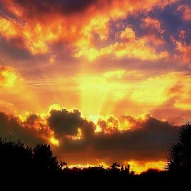 Dunedin, Florida. by Edward Allen - Landscapes Cloud Formations (  )