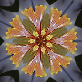 Lily Kaleidoscope by Eva Pastor - Abstract Patterns ( kaleidoscope, lily, green, digital art, yellow )