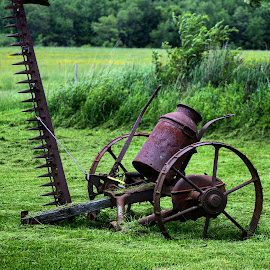 American Steel by Brian Homitz - Artistic Objects Antiques ( field, farm, antiquity, tools, farmer, farmland, harvest, antique, farming, antiques,  )