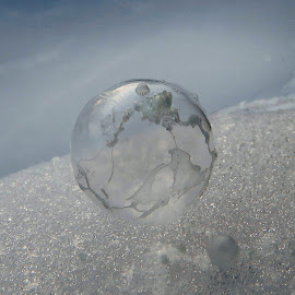 Frozen by Janet Herman - Abstract Macro ( ice, snow, nature up close, frozen, globe )