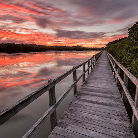 Fiery walkway by Steve Badger - Landscapes Sunsets & Sunrises ( tweed river, sunset, australia, walkway, new south wales,  )