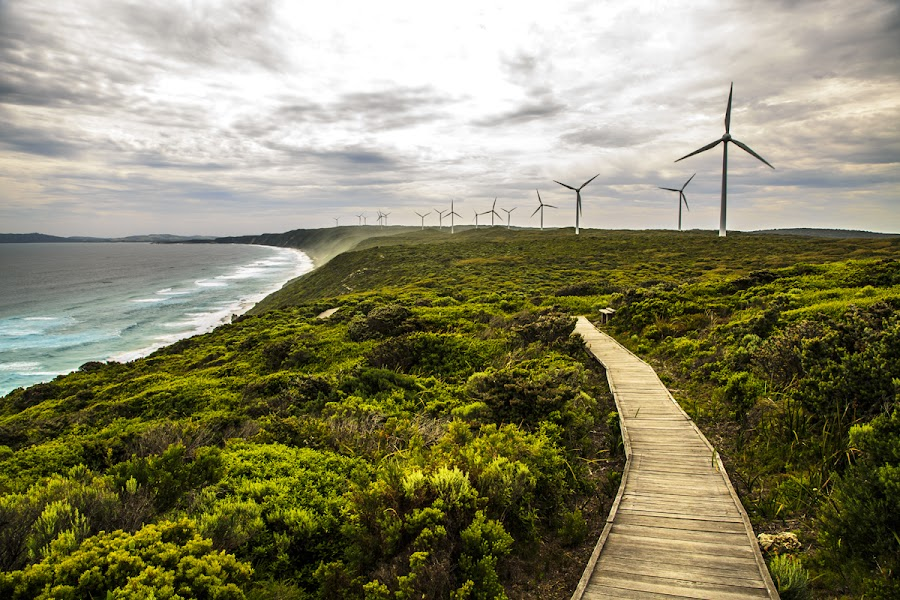 Albany Wind Farm by CK Lam - Landscapes Travel ( torndirrup national park, albany wind farm, albany, western australia )
