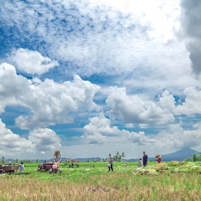 The Farmer by Josef Farianto - People Street & Candids ( bajawa, soa )