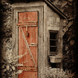Luxury Outhouse by Brenda Conrad - Buildings & Architecture Decaying & Abandoned ( old, outhouse, antique, weathered,  )