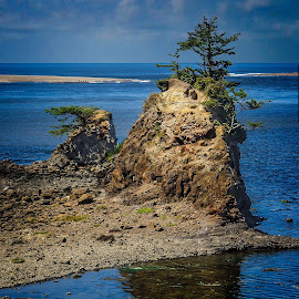 Schooner Creek, Oregon by Joseph Vittek - Landscapes Waterscapes