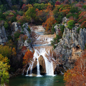 Turner Falls by Jack Powers - Landscapes Forests ( oklahoma, falls, turner falls )