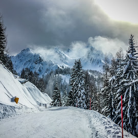 SkiSlope by Mario Horvat - Instagram & Mobile iPhone ( ski, cols, mountains, winter, white, trees, italy )