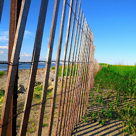 Stratford Point by Erika  Kiley - Novices Only Landscapes ( water, sand, fence, summer, beach )