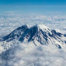 Mount Rainier by Shari Linger - Instagram & Mobile iPhone ( washington, mountains, seattle, mount rainier, cascades, glaciers )