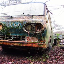 Tumbledown by Bella Hutson - Transportation Automobiles ( new orleans, old, van, cars, mechanics, lousiana, ford, antique )