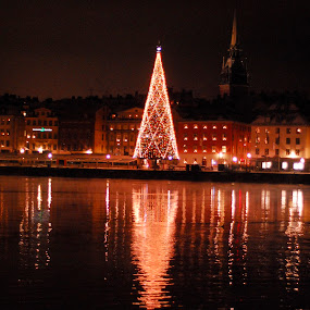 stockholm tree  by Worowsky Papa - Public Holidays Christmas ( stockholm, pwcholidays, christmas, sea, night )