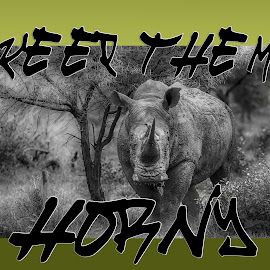 by Wim Moons - Typography Captioned Photos ( poaching, horn, rhino )