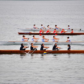 Row row row your boat by Paula NoGuerra - Sports & Fitness Other Sports ( water, rowing, sports, four, competition )