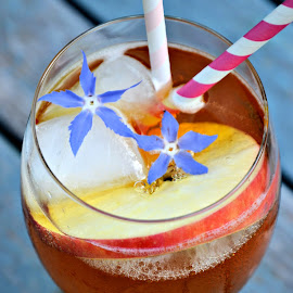 Apple cider punch by Heather Aplin - Food & Drink Alcohol & Drinks