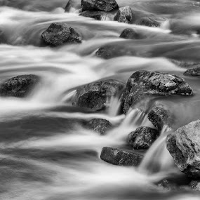 Rocks in a Stream by Elvis Dorencec - Nature Up Close Water ( waterdown great falls, waterdown )