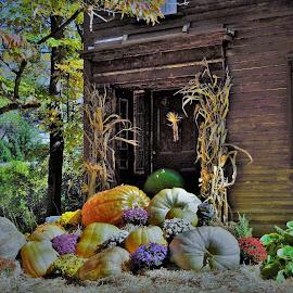 State Road Old Deerfield Fall display. by Monroe Phillips - City,  Street & Park  Neighborhoods