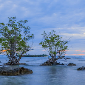 Twilight at Umang by Pudjiyanto Oentoro - Landscapes Sunsets & Sunrises