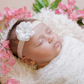 Peacefully Asleep by Nicole Ferris - Babies & Children Babies ( backlit, girl, pink, baby, flowers, newborn )
