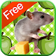 Mouse Games for Kids - Free