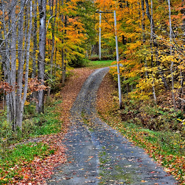 by John Geddes - Transportation Roads