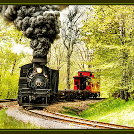 The Little Red Caboose by James Eickman - Transportation Trains (  )