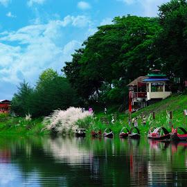 Beauty in Nature by T. M. Masum Billah - Nature Up Close Gardens & Produce ( beauty of nature, natural light, proyas sena binodon park, bangladesh, nature, ghagot, rangpur, beauty in nature, landscapes, landscape, natural park, natural, natural beauty )