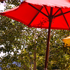 Primary colors by Amber O'Hara - City,  Street & Park  Markets & Shops ( red, umbrellas, blue, trees, yellow )