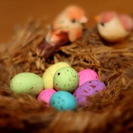 by Ellen Strydom - Public Holidays Easter
