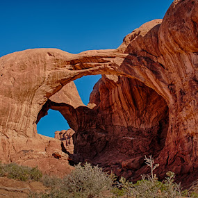 Double Arch by Craig Pifer - Landscapes Caves & Formations ( arches np, desert, arch, erosion, sandstone, rock, landscape, weathered, national park, utah, arches, southwest, double arch, formation )