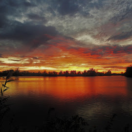Scarlet Calm by Kathy Woods Booth - Landscapes Sunsets & Sunrises ( scarlet, sunset, reflections, dusk, fire, nightscape )